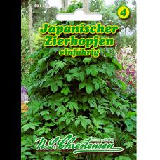 Humulus japonicus, Japanese ornamental hops