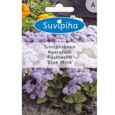 Ageratum houstonianum, Floss flower Blue Mink SALE - 50%