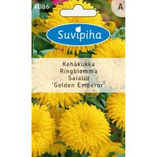 Calendula off. Golden Emperor, Marigold, yellow