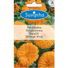 Calendula off., Marigold Orange King, Orange