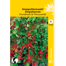 Amppel tomato Hundreds & Thousands. SOLD OUT1