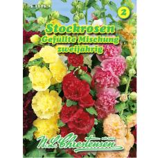Alcea rosea, Hollyhock, Mix