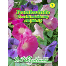 Pharbitis purpurea,  Ipomoea purpurea, Morning glory mix