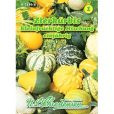 Cucurbita pepo, Ornamental Pumpkin mix