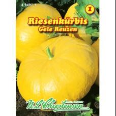Pumpkin  Gele Reuzen, Cucurbita maxima