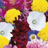 Flower mixes