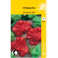 Hot Pepper Jamaican Bell. SALE - 20%!