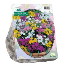Allium Mix, 100 bulbs.