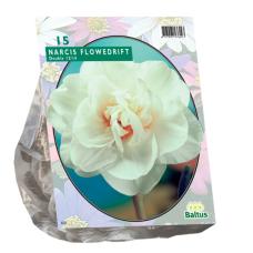 Narcis Flower Drift per 15