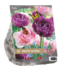 "Urban Flowers - Pretty in Pink ""City Flowers"",12 bulbs."