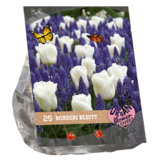 Urban Flowers - Borders Beauty per 25. SOLD OUT!