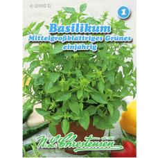 "Basil ""Mittelgrossblattries Grunes"", medium-leaved green (Ocimum basilicum)"
