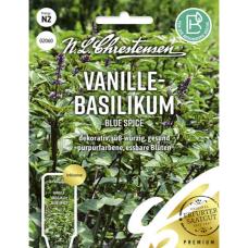 Vanilla-basil 'Blue Spice', NEW! PREMIUM