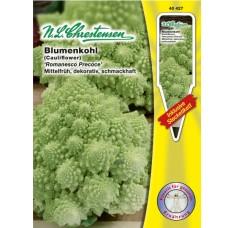 Cauliflower  Romanesco Precoce