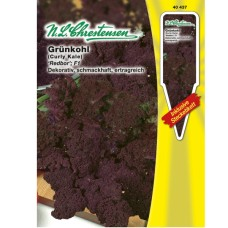 Kale Redbor F1. SOLD OUT!