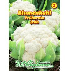 Cauliflower Frühernte (Brassica oleracea)