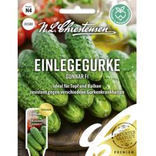 Pickling cucumber 'Gunnar F1', NEW 2021! PREMIUM