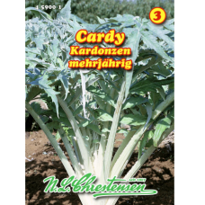 Cardy Kardonzen' vegetable artichoke (Cynara cardunculus)