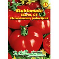 Beef tomato 'Ikarus GS' (Solanum lycopersicum)