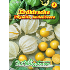 Cape Gooseberry / Physalis / Andean berry (Physalis edulis)