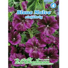 Mallow sylvestris, Blue Mallow