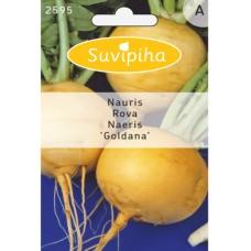 Turnip  Goldana