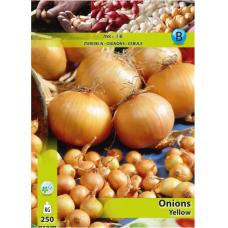 Onion set Yellow, Allium cepa (x250 Gram). SALE - 70%!