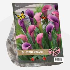 Urban Flowers - Night Dreams per 3. SALE - 70%!