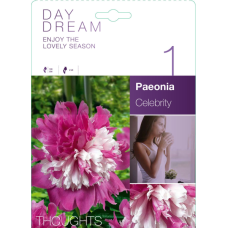 Paeonia Celebrity (x1). SOLD OUT!!
