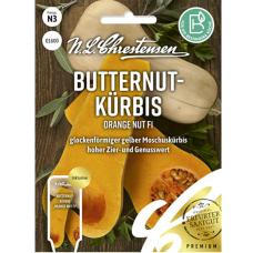 Squash 'Early Butternut', F1 (Cucurbita moschata)