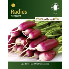 Radish Flamboyant 3,  tape seeds