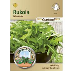 Arugula 'Wilde Rauke', seed tape