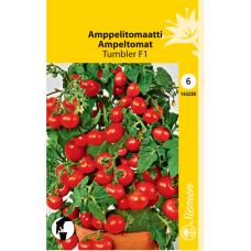 Amppel tomato Tumbler F1