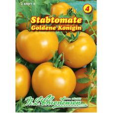 Tomato 'Goldene Königin' (Solanum lycopersicon)